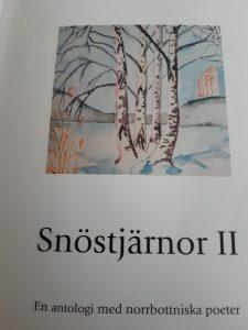 Antalogin Snöstjärnor II